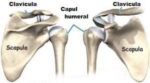 osteocondroza istoricului cazului articulației umărului