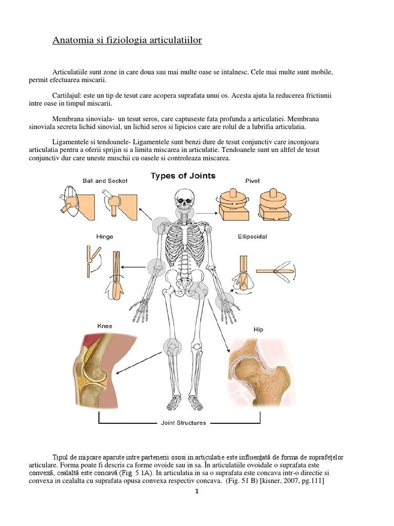 Sarcomul de țesut moale