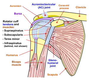 Sindromul de canal carpian, Cum să tratezi inflamația încheieturii