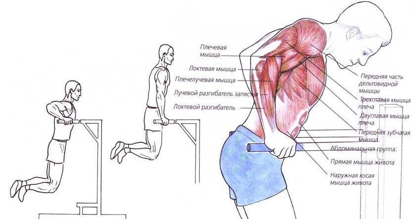 artrita tranzitorie a genunchiului articulațiile pe mâini rănite de frig