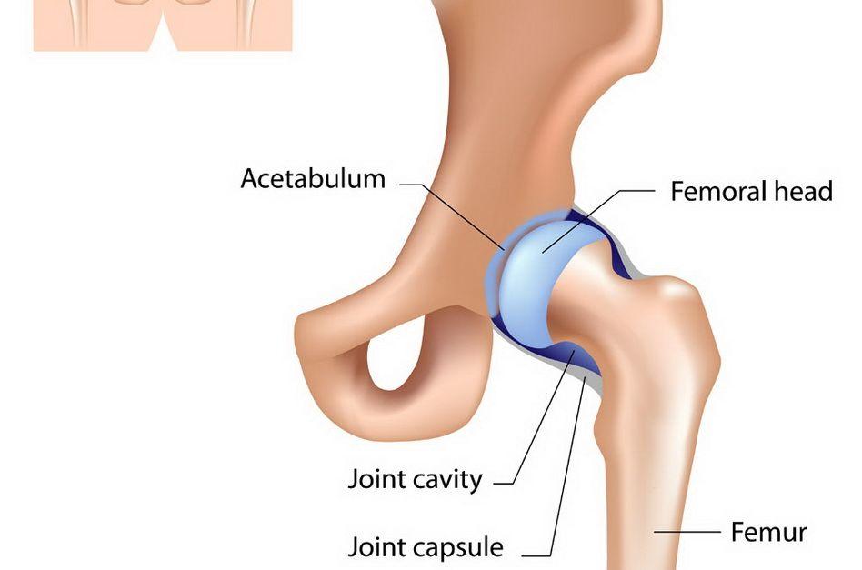 dacă durere în articulația șoldului oboseală constantă dureri articulare