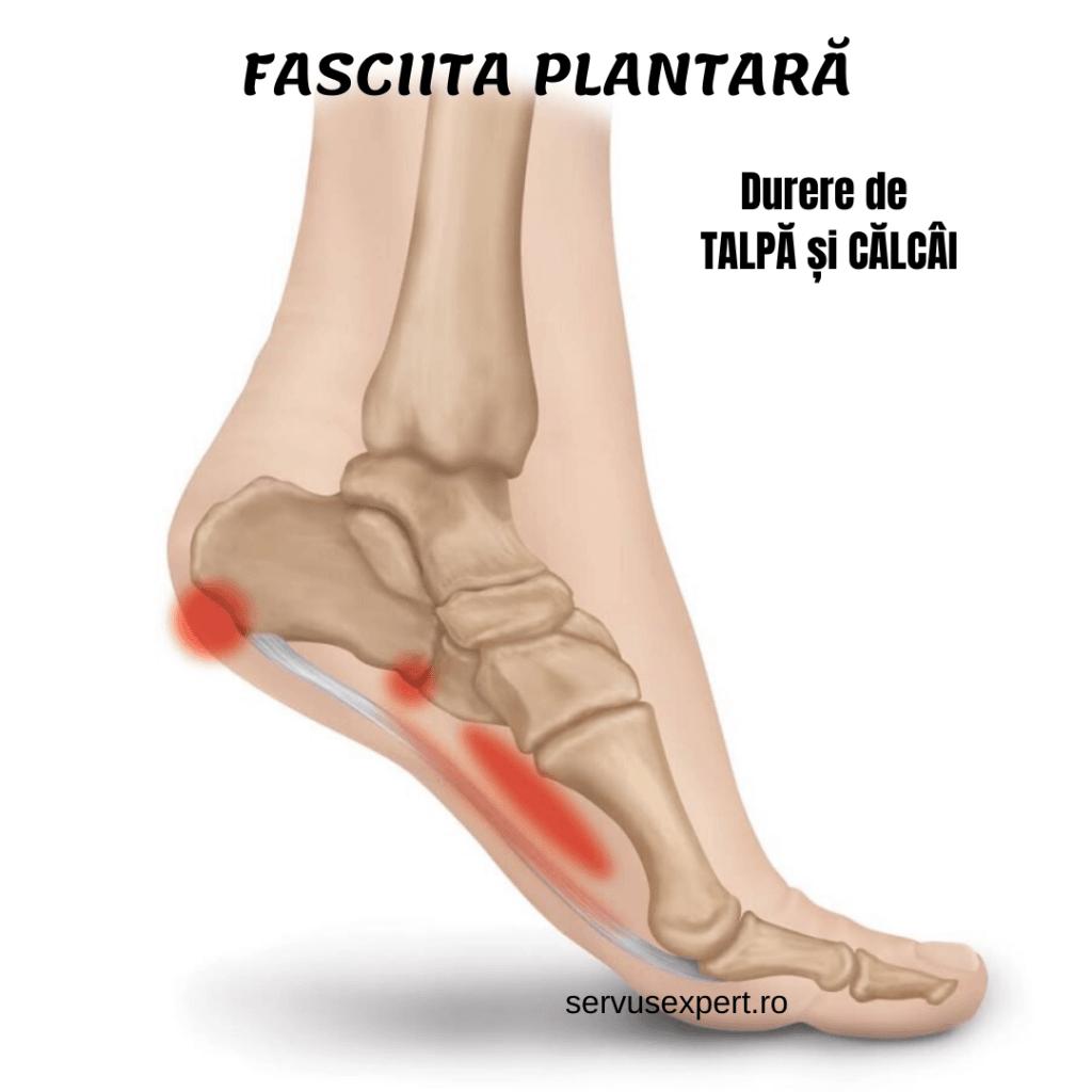 durere în articulațiile calmante ale picioarelor