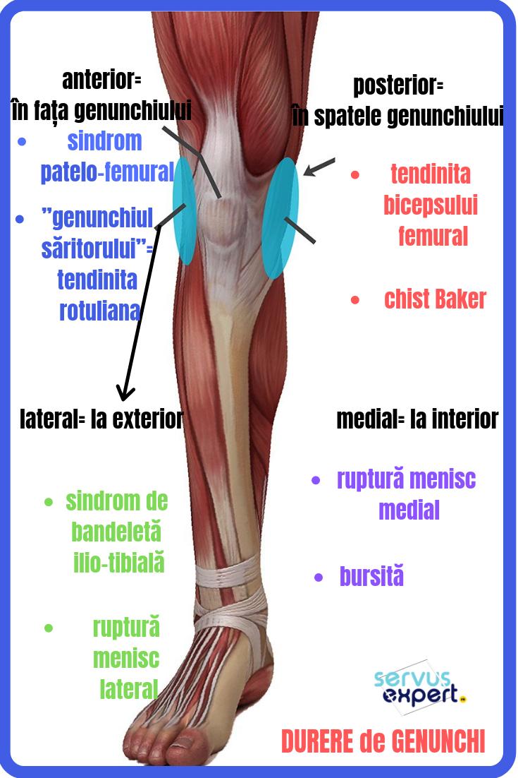 dureri de genunchi și căderea părului