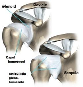 periartrita humeroscapulară a tratamentului articulației umărului artrita incheietura
