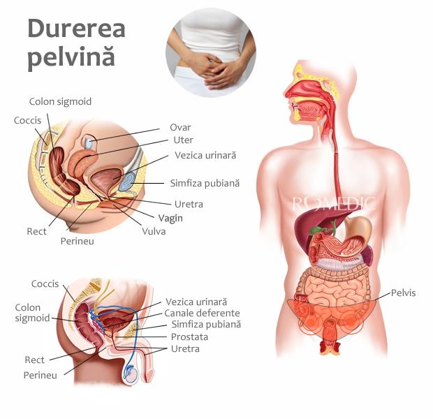 articulații și dureri de stomac