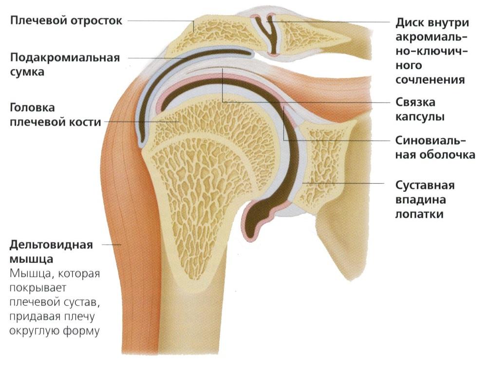 cum se tratează restaurarea articulațiilor poliartritei