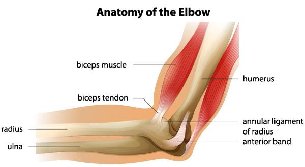 durere în articulația cotului stâng