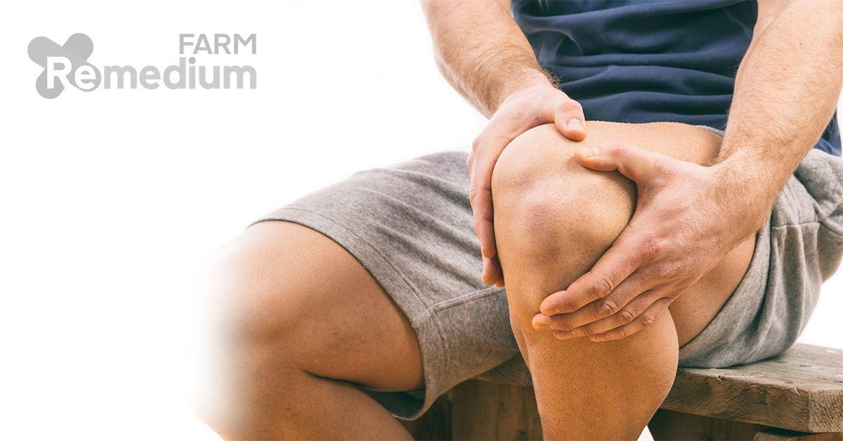 remedii argo articulare durere în articulațiile genunchiului atunci când mergeți