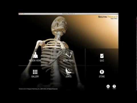 Artroza articulației atlantoaxiale. Cu dureri articulare ce să facă