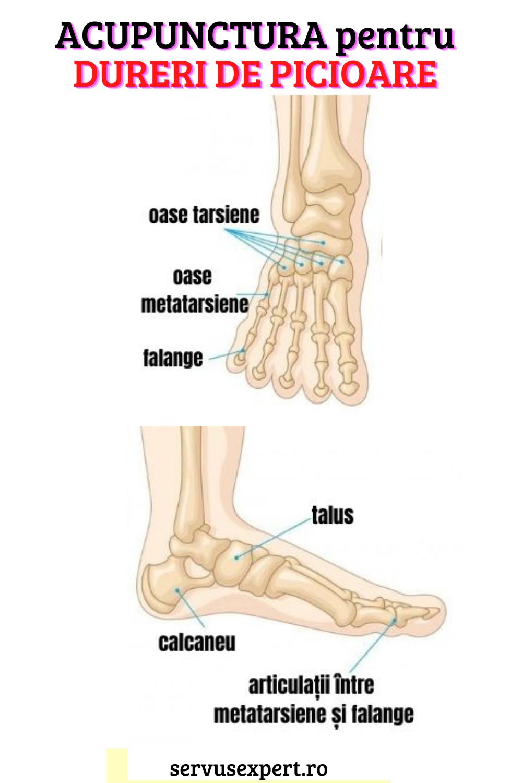 crize și durere în articulația piciorului