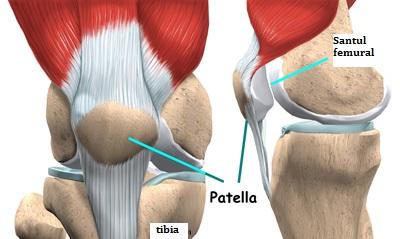 pliul mediopatelar al tratamentului articulației genunchiului