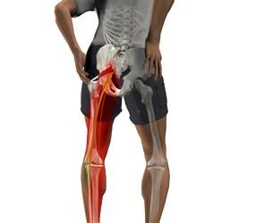 articulație dureroasă a piciorului pe coapsă