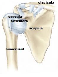 durere și crampe în articulația umărului