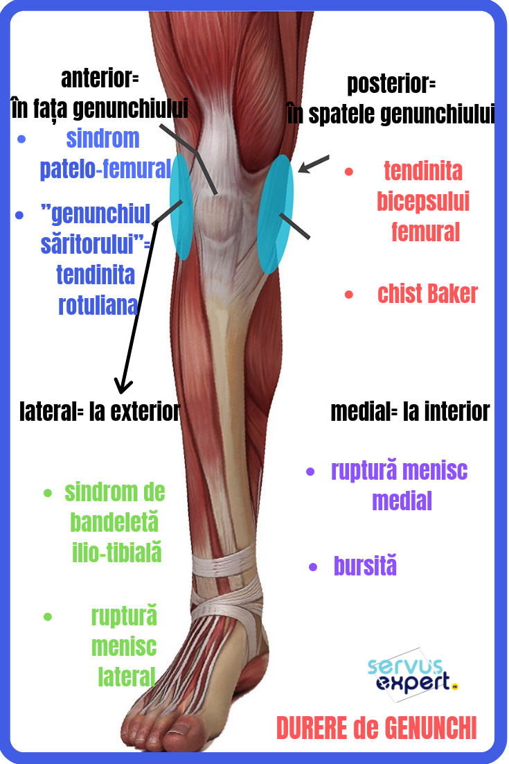 dureri musculare lângă genunchi poate artroza să fie tratată cu frig