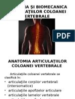 artrita și artroza tratamentului articulației genunchiului