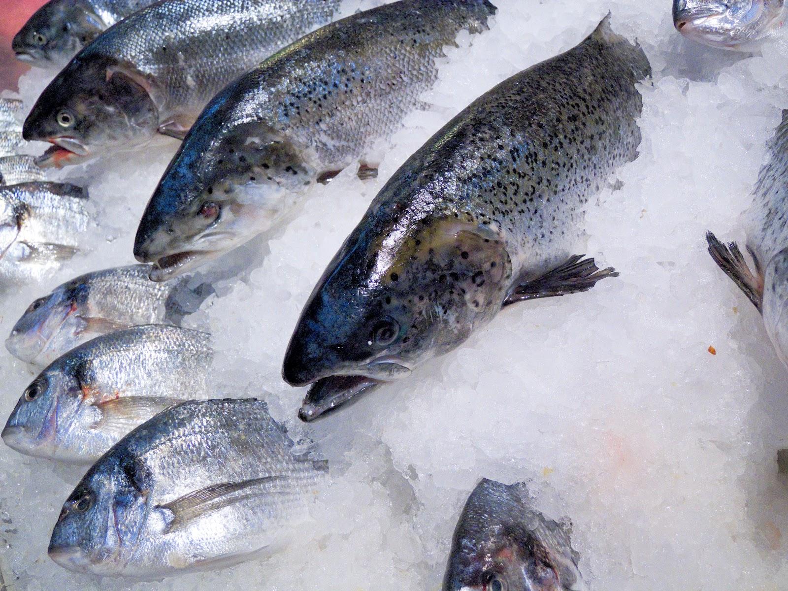preparare comună pe bază de pește tratament comun pentru solidol