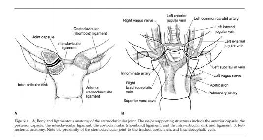 ligamentele tratamentului unguent al articulației genunchiului articulațiile și venele la nivelul picioarelor doare