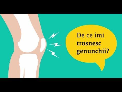 unguent pentru sportul articulațiilor genunchiului