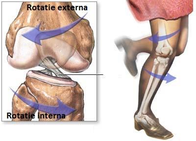 timpul de recuperare după ruperea ligamentelor articulației genunchiului cum să tratezi articulațiile losproy