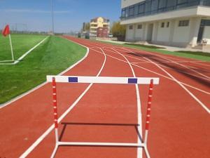 Restaurare comună la sportivi