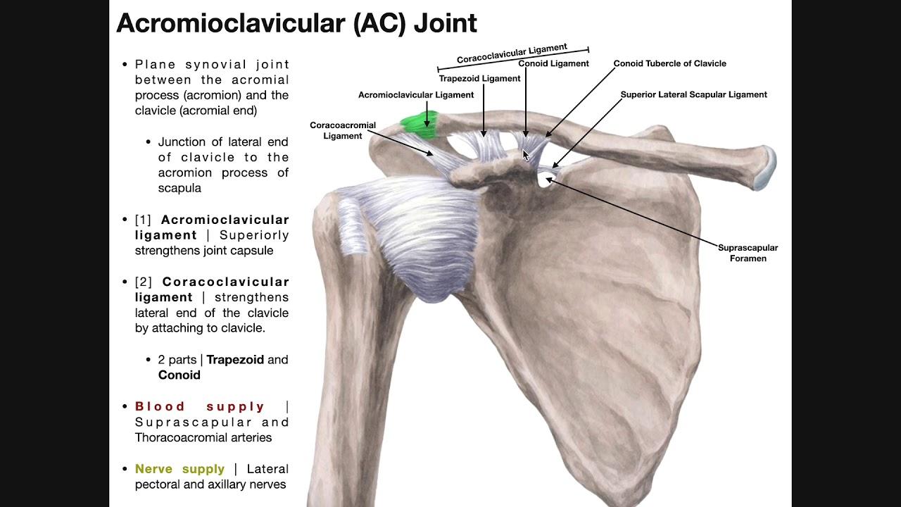 umflarea interiorului genunchiului