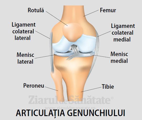 unguente utilizate pentru osteochondroza gâtului articulația umflată pe umflarea mâinii